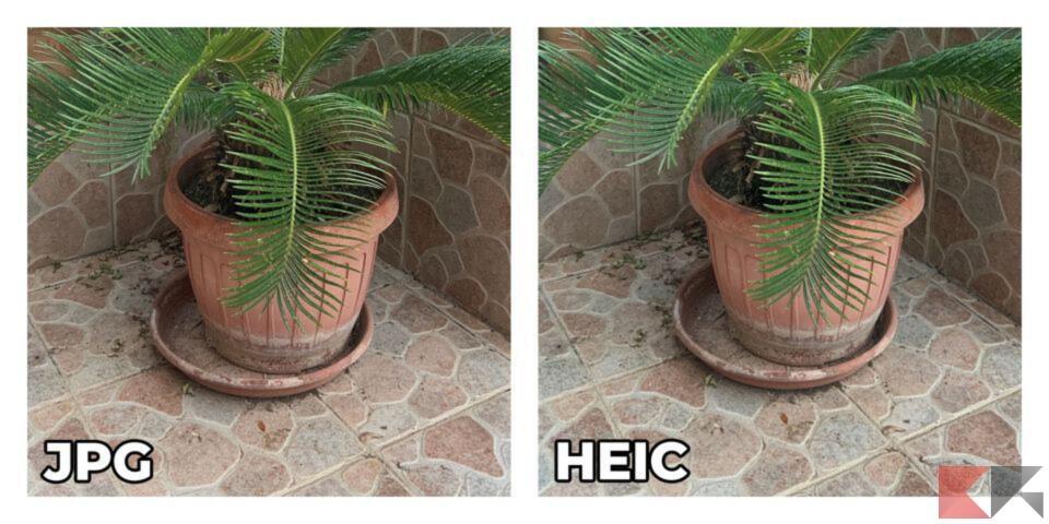 differenze heic jpg