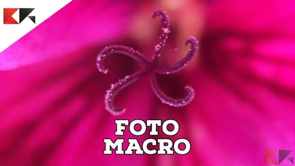 foto macro iphone 4