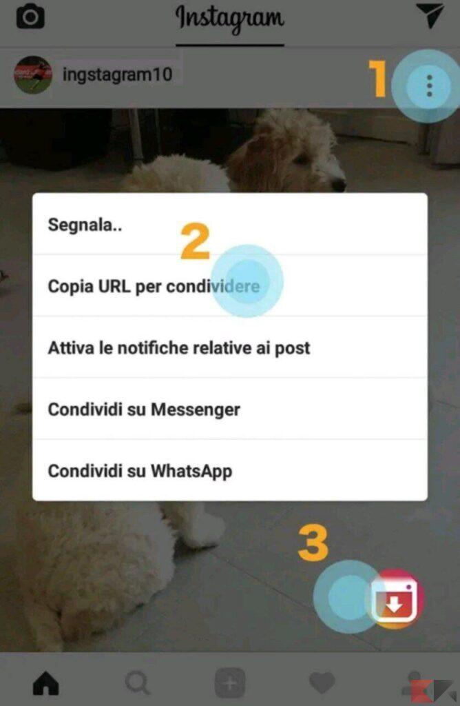 scaricare video instagram reels