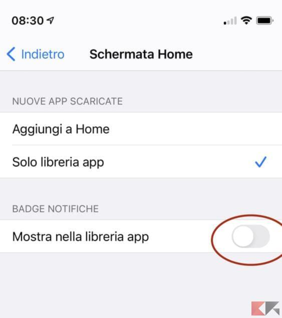 Come disattivare notifiche Libreria App su iPhone 1