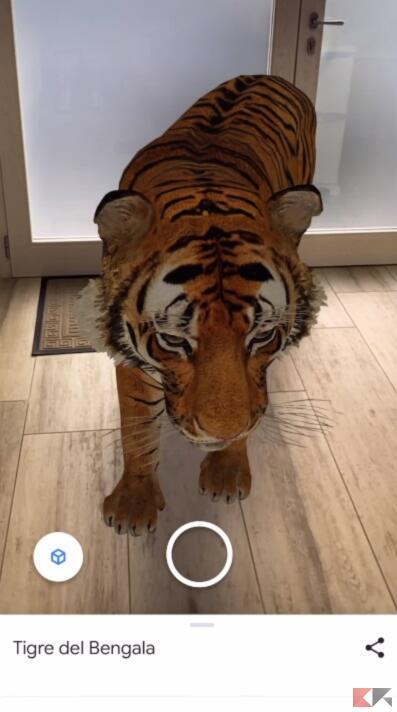 animali 3D trucchi google