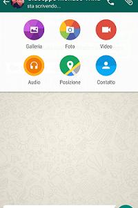 WhatsApp_md_media