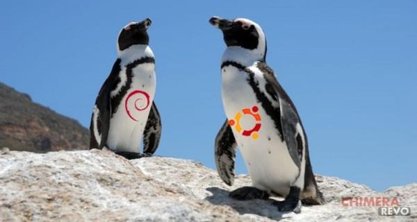 c_ubuntu-deb2