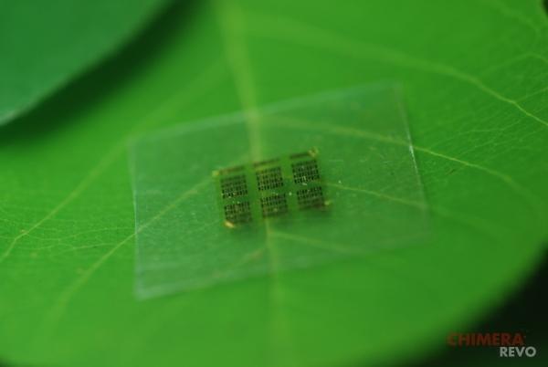 il-chip-biodegradabile-nanofibrilla-di-cellulosa