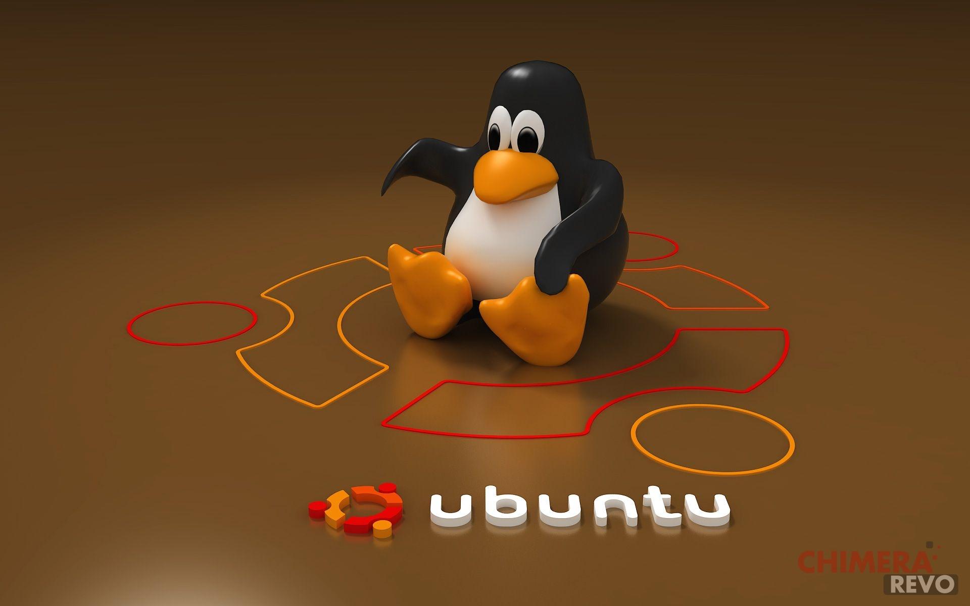 ubuntu risultato