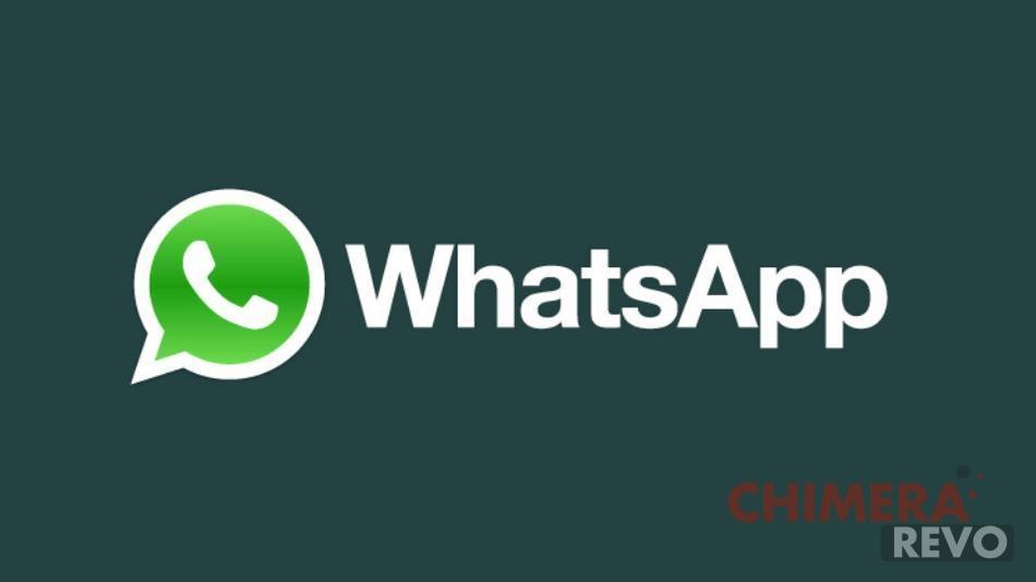 WhatsApp: trucchi e segreti per usarlo al meglio